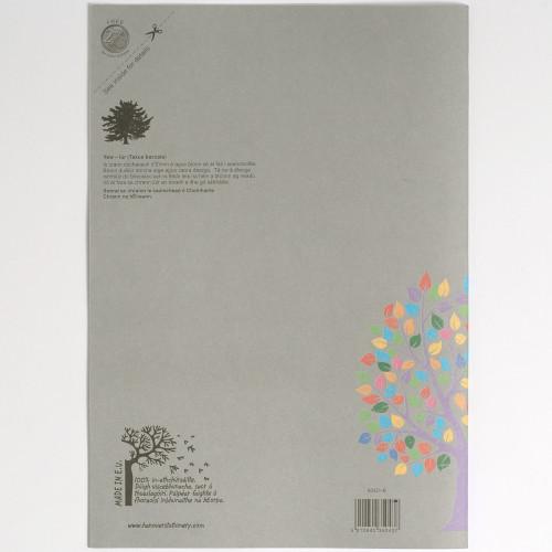 Aisling Graph Bk A4 32p G2:10:20 Pk10