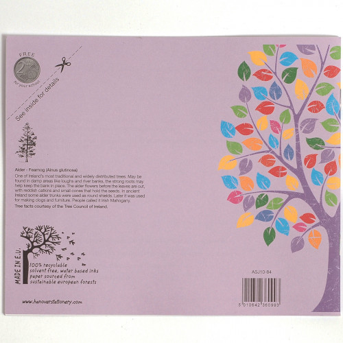 Aisling Exercise Book 165x200 32pF15Pk10