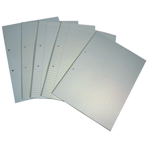 File Paper Punched 2 Hole A4 F6M