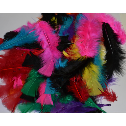 ASSORTED COLOURED FEATHERS (50gm BAG)